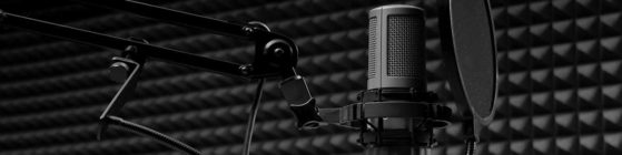 fotoStudio-559x140  voice over - voiceover