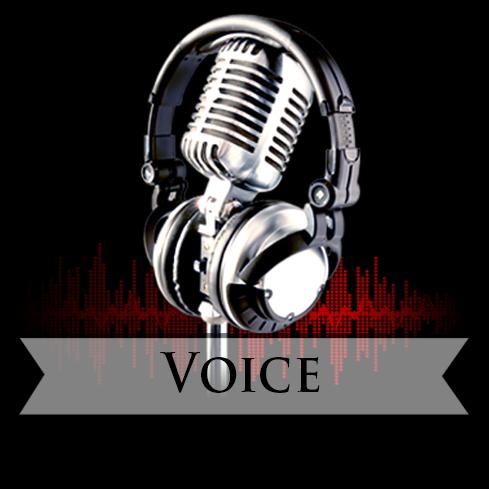 Voice  voice over - voiceover