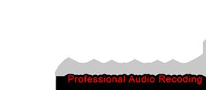 logo3  voice over - voiceover